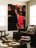 Toronto Raptors v New York Knicks: Amir Johnson Wall Mural by Ray Amati