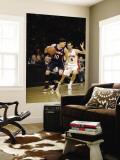 Atlanta Hawks v Toronto Raptors: Mike Bibby and Jose Calderon Wall Mural by Ron Turenne