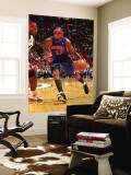 Detroit Pistons v Miami Heat: Richard Hamilton and LeBron James Wall Mural by Victor Baldizon