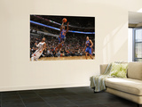 New York Knicks v Charlotte Bobcats: Toney Douglas Wall Mural by Brock Williams-Smith