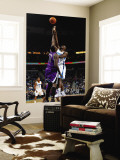 Sacramento Kings v New Orleans Hornets: Emeka Okafor and Samuel Dalembert Wall Mural by Chris Graythen