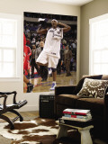 Houston Rockets v Dallas Mavericks: Brendan Haywood Wall Mural by Danny Bollinger