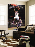 Atlanta Hawks v Detroit Pistons: Charlie Villanueva and Mike Bibby Wall Mural by Allen Einstein