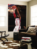 Atlanta Hawks v New York Knicks: Amar'e Stoudemire Wall Mural by Jeyhoun Allebaugh