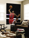 Chicago Bulls v Phoenix Suns: James Johnson and Channing Frye Wall Mural by Christian Petersen