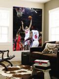 Toronto Raptors v Detroit Pistons: Tayshaun Prince, Sonny Weems and Ben Wallace Wall Mural by Allen Einstein