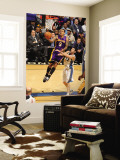 Los Angeles Lakers v Washington Wizards: Matt Barnes and Kirk Hinrich Wall Mural by Andrew Bernstein