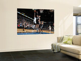 San Antonio Spurs v Minnesota Timberwolves: Anthony Tolliver and Tiago Splitter Wall Mural by David Sherman