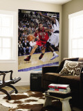 New Jersey Nets v Dallas Mavericks: Brook Lopez and Brendan Haywood Wall Mural by Glenn James