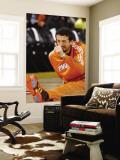 Phoenix Suns v Golden State Warriors: Hedo Turkoglu Wall Mural by Rocky Widner