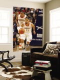 Denver Nuggets v Charlotte Bobcats: D.J. Augustin Wall Mural by Kent Smith
