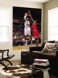 Chicago Bulls v Sacramento Kings: Jason Thompson and Luol Deng Wall Mural by Rocky Widner