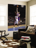 Los Angeles Lakers v Detroit Pistons: Pau Gasol and Ben Wallace Wall Mural by Allen Einstein