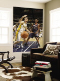Charlotte Bobcats v Indiana Pacers: Mike Dunleavy and Dominic McGuire Wall Mural by Ron Hoskins