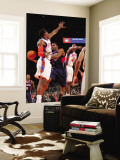 Atlanta Hawks v New York Knicks: Amar'e Stoudemire, Joe Johnson and Toney Douglas Wall Mural by Jeyhoun Allebaugh