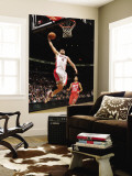 New Jersey Nets v Toronto Raptors: Linas Kleiza and Sasha Vujacic Wall Mural by Ron Turenne