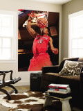 Toronto Raptors v New York Knicks: DeMar DeRozan Wall Mural by Ray Amati