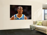 New Orleans Hornets v Miami Heat: Chris Paul Wall Mural by  Mike