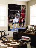 Chicago Bulls v Dallas Mavericks: Jason Terry and Kyle Korver Wall Mural by Danny Bollinger