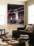 Toronto Raptors v Philadelphia 76ers: Andres Nocioni Wall Mural by David Dow