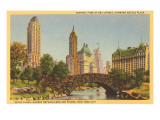 Savoy Plaza, Hotels, Central Park, New York City Poster