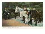 Donkeys in Central Park, New York City Prints