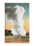 Old Faithful, Yellowstone Park Prints