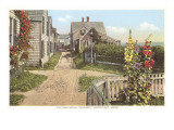 Saltbox Houses, Siasconset, Nantucket, Massachusetts Print