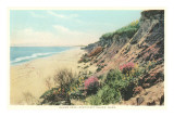 Squam Head, Beach, Nantucket, Massachusetts Art