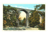 Starruca Viaduct, Lanesboro, Pennsylvania Posters