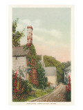 Ash Lane, Nantucket, Massachusetts Print