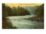 Fluss McKenzie, Oregon Kunstdrucke