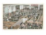 Immigrant Processing, Ellis Island, New York Pósters