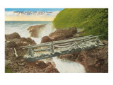 Driftwood Bridge, Devil's Churn, Oregon Prints