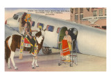 Indian on Pinto with Airplane, Oklahoma City, Oklahoma Art