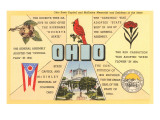 Ohio's Flag, Bird, Capitol, etc. Posters