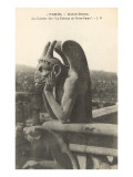 Gargoyle on Notre Dame, Paris Prints