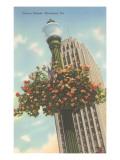 Hanging Flowers, Allentown, Pennsylvania Print