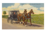 Amish in Carriage, Lancaster County, Pennsylvania Prints
