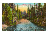 Rogue River, Oregon Prints