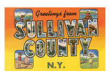 Greetings from Sullivan County, New York Prints