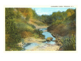Canadaway Creek, Fredonia, New York Prints