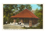 Pavilion, Mill Creek Park, Youngstown, Ohio Posters