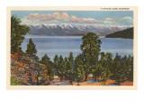 Flathead Lake, Montana - Reprodüksiyon