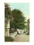 Flora Street, Nantucket, Massachusetts Posters