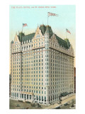 Plaza Hotel, New York City Poster