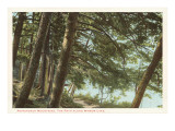 Mirror Lake, Adirondacks, New York Prints