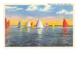 Colorful Sailboats, Lake Erie, Toledo, Ohio Prints
