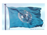 Flag of the United Nations Prints