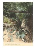 Mystic Gorge, Watkins Glen, New York Prints
